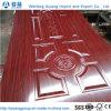 Comités van de Huid van de Deur van de Leverancier van China de Moderne Decoratieve Binnenlandse
