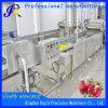 Обработка овощей овощной машины шайбу