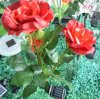 Lumière de fleur d'énergie solaire de DEL comme forme de Rose