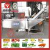 Equipo que se lava de la fruta de la máquina vegetal de múltiples funciones de la limpieza en existencias