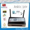 Liberare 1500 canali televisivi IPTV arabo