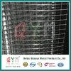 304 316 un'elettrotipia da 3/4 di pollice hanno galvanizzato la rete metallica saldata Rolls