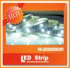 luces de la decoración del verde LED de la raya de 12V SMD5050 36W 30LEDs IP20 LED