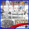 Fábrica de China semilla de calabaza bombardeo equipamiento de la máquina