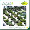 Onlylife verwendete im traditionellen Schmutz-Garten, den mehrfachverwendbarer Garten Beutel wachsen