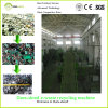 A maquinaria de recicl ambiental do Dura-Fragmento para E-Desperdiça