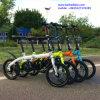"""16 """" bicyclettes se pliantes/vélo d'alliage d'aluminium"""