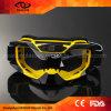 Lunettes flexibles durables faites sur commande de ski de motocyclette de MX de modèle élégant