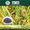 Kingeta promuove il fertilizzante microbico composto basato carbonio di fotosintesi