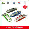 USB del registratore 4GB
