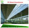 Тип стеклянный парник Venlo для растущий овоща и цветков