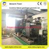 Biogaz Generator Set LPG/CNG/Biogas comme Fuel