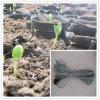 Cabo de aquecimento de aquecimento do solo para Propagators do fundamento & da semente