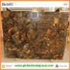 Plakken van het Graniet van Kosmus de Gouden voor Countertops van de Keuken