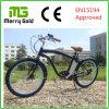 남자를 위한 LCD 디스플레이 Ebike 바닷가 함 전기 자전거 36V 250W