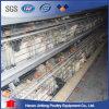 Compartimento da camada de frango para o Paquistão/Galinheiro para galinhas poedeiras