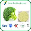 Sulforaphane 5% 10% 50% 98% 1% 0.5% 0.3% 0.1%のブロッコリーのエキス