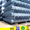 1-1/2 '' geschweißtes Pregalvanized Stahlrohr leitet (JCPG-5)