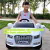 Audi badine la conduite électrique de véhicule de jouet sur le véhicule