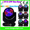 19X15W Big Bee Eye LED Moving Head