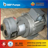 Grosse Strömungsgeschwindigkeit-Gang-Öl-Pumpe