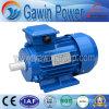 Мотор индукции серии высокого качества Y2 трехфазный