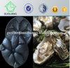 Austraila Markt-populäres 31*29cm schwarzes Vakuum, das Plastiknahrungsmittelfach-Tellersegment für Auster in der Gaststätte bildet