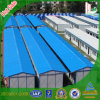 Fabricante profesional de la calidad de Hight de casa prefabricada de las aves de corral en Guangdong, China (Khk1-601