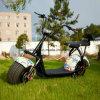 motorino di golf 1000W con la batteria di litio 60V