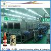 Автоматическая стеклянную бутылку пива промывки пастеризатора (WP)