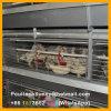Type automatique de H cages de batterie de volaille pour la poulette