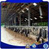 Сборные больших Span структуры стали фермы крупного рогатого скота