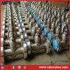 Valvola di globo di sigillamento di pressione dell'acciaio inossidabile