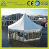 Barraca do PVC do equipamento do desempenho para a exposição