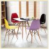 Chaise de loisirs en plastique de salon