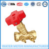 Válvulas de bronze do contrapeso dos medidores de água (Dn15-40mm)