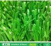 Fibra del monofilamento del PE fatta in Cina ampiamente usata per il filato artificiale Applicated dell'erba per il campo di football americano, campo di golf, campo di Tennies, campo da giuoco del banco, calcio