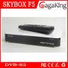 중국 1080P HD 텔레비젼 Receiver Skybox F5