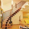 Escalier incurvé d'acier inoxydable d'intérieur de contemporain