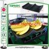 Remplissage en plastique de crémaillère de plateau de banane pour la crémaillère de fruit de supermarché