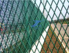 PVC Protection Expanded Wire Mesh (工場)