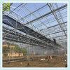 농업 그늘 그물 녹색 집