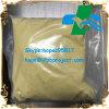 Ormoni steroidi anabolici di cristallo giallo-chiaro Trenbolon Gestrinon basso