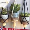 Благоухающие сады . Moven хлопка веревки строп предохранительного пояса Net Baket мясистые Сада растений