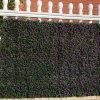 La plastica decorativa del giardino protegge la barriera artificiale della rete fissa
