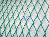PVCによって塗られる拡大された金網のパネル(TS-E49)