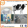 Fabbrica Directly Sale Vacuum Pump per Milking Machine/Milking Machines per Cows da vendere