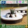Шезлонги плетеной сад круглый изогнутый диван, круговой стул Tg-Jw005