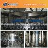 Schlüsselfertige Haustier-Flasche kohlensäurehaltige Getränk-abfüllende Zeile