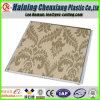 China-Fantasie-Auslegung PVC-Panel